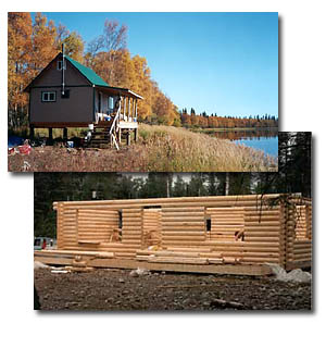 cabin building packages